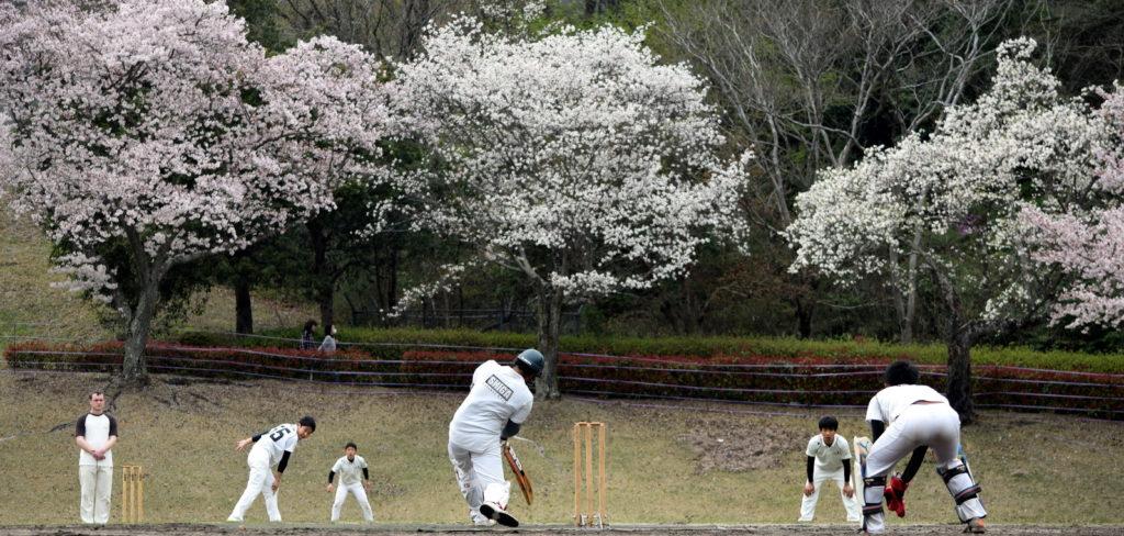 Japan Cup Kansai circa 2016